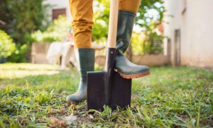 Top 10 meest nuttige benodigdheden voor in de tuin